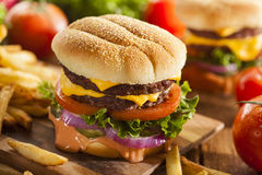 Beef Cheese Hamburger with Lettuce Tomato. And Onions Stock Photography