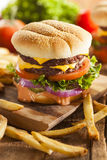 Beef Cheese Hamburger with Lettuce Tomato Stock Images