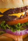 Beef Cheese Hamburger with Lettuce Tomato Stock Photo