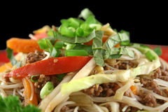 Beef Chow Mein 6. Stirfry beef chow mein with fresh Chinese vegetables stock photos