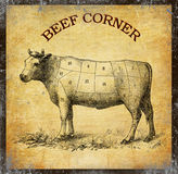 Beef corner, food vintage board with grunge background. Beef chart with numbered cuts, grunge background added with vintage effects Royalty Free Stock Image