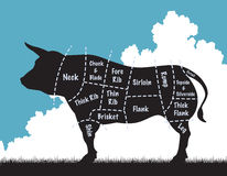 Beef cow. Editable vector illustation of a cow silhouette showing the cuts of meat royalty free illustration