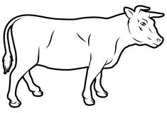 Beef cow illustration Royalty Free Stock Photo