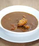 Beef curry. Japanese traditional food beef curry on white dish Royalty Free Stock Photos