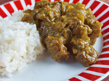 Beef Curry with Rice Royalty Free Stock Photography