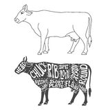 Beef cuts diagram Stock Image