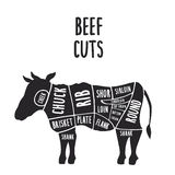 Beef cuts. Vector cuts of beef, hand-drawn butcher cuts scheme Stock Photography