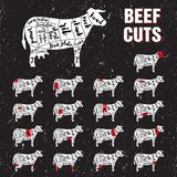 Beef Cuts Vector Template Set vector illustration