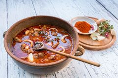 Beef Goulash Royalty Free Stock Photo