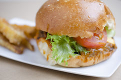 Beef hamburger and french fries, fast food Stock Photography