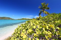 Beef Island Scenery. An ideal day in the British Virgin Islands Stock Photography