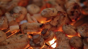Beef kababs on the grill closeup stock video footage