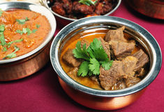 Beef korma curry in bowl Stock Image