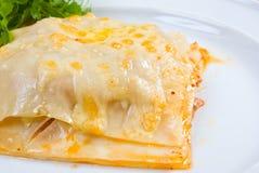 Beef lasagne. Closeup italian, pasta stock images