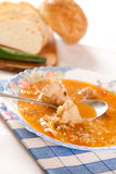 Beef meat and rice soup. Deep dish of soup with beef meat and rice Royalty Free Stock Photography