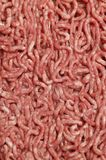 Beef Mince Royalty Free Stock Photography