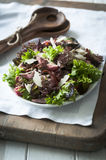 Beef and mixed leaf salad Royalty Free Stock Image