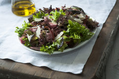 Beef and mixed leaf salad Royalty Free Stock Images