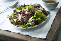 Beef and mixed leaf salad Stock Photo