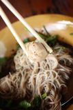 Beef noodles in soup Royalty Free Stock Photo