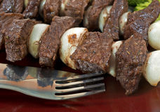 Beef and onion kabobs on plate Stock Photos