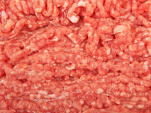 Beef. Raw pork meat ground beef Royalty Free Stock Photography