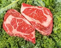 Beef rib eye on the salad leafs. Dry aged rib eye steaks on the salad leafs Stock Image