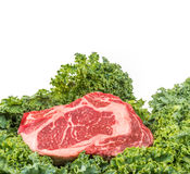 Beef rib eye on the salad leafs Stock Photos