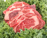 Beef rib eye on the salad leafs Royalty Free Stock Photography