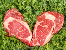 Beef rib eye on the salad leafs. Dry aged rib eye steaks on the salad leafs Stock Images