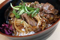 Beef Rice. Stirred Fried Beef Rice - Japanese Style Royalty Free Stock Photo