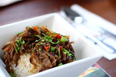Beef Rice. A bowl of Hawaiian style beef rice royalty free stock images