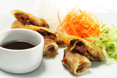 Beef Rolls with Vegetable Julienne and Sauce Royalty Free Stock Image