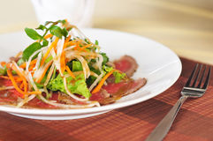 Beef salad. Selected fine sliced beef salad with teasty dressing Stock Photos