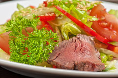 Beef salad Stock Images
