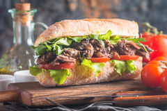 Beef sandwich with tomato and salad Royalty Free Stock Photo