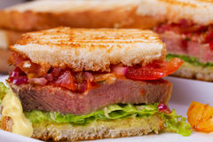 Beef Sandwich with Tomatoes, Coriander, Red Onion and Green Salad. Royalty Free Stock Images