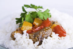 Beef with sauce on rice Royalty Free Stock Images