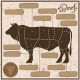 Beef scheme Royalty Free Stock Photography