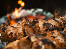 Beef shish kabobs on the grill Stock Images
