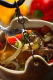 Beef in the soup. Tasty beef in the soup with vegetables and herbs Royalty Free Stock Image