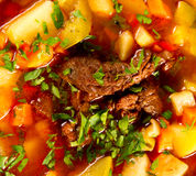 Beef soup Stock Photography