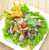 Beef Spicy Salad Stock Photos
