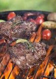 Beef steak on garden grill Royalty Free Stock Photo