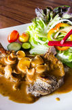 Beef steak with mushroom sauce stock photography