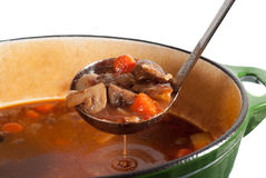Free Beef Stew Royalty Free Stock Photo - 19050365