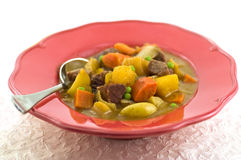 Beef Stew. Wholesome hearty beef stew in coral serving dish Royalty Free Stock Photos