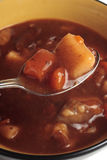 Beef stew Stock Photography