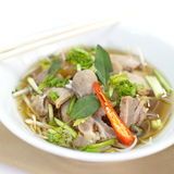 Beef Stew Noodle Soup Royalty Free Stock Photo