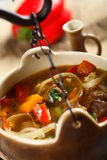 Beef stew in the pot. Beef stew with pepper and onion in the pot Royalty Free Stock Image